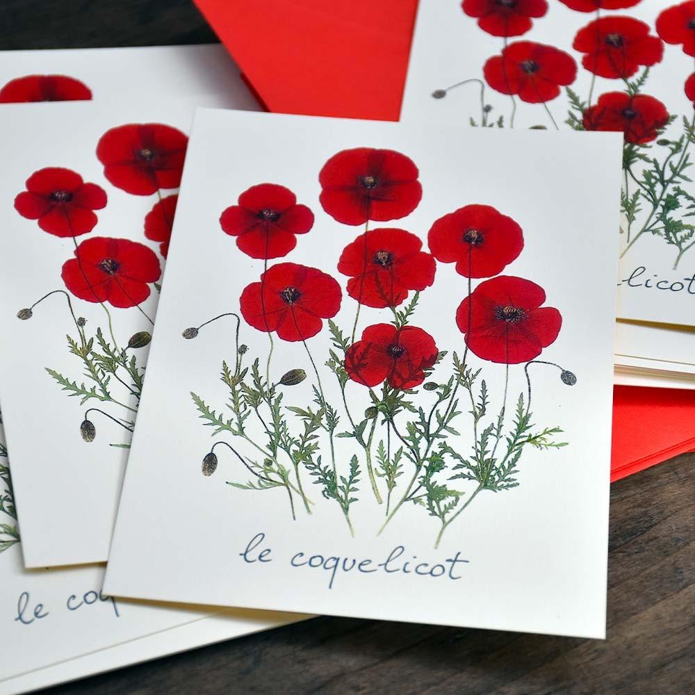 10-cartes-postales-le-coquelicot-avec-le